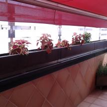 jardinera-20150613_161946 (Copiar)