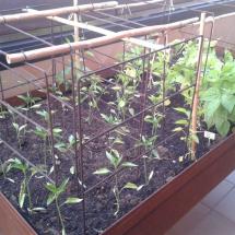 jardineras-2012-05-31 06.31.50 (Copiar)