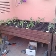 jardineras-2012-06-02 20.56.32 (Copiar)
